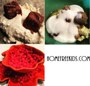 homefreekids.com Chocolate and Cinnamon with a Peppermint Twist: Fabulous Fall Cookie Recipe